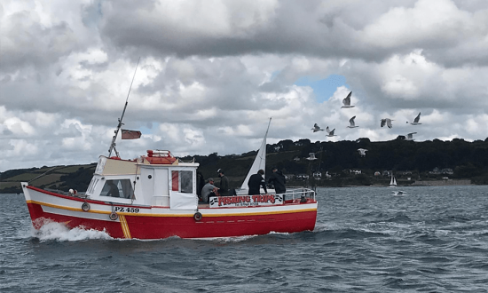 Seagulls following our boat on a fishing trip