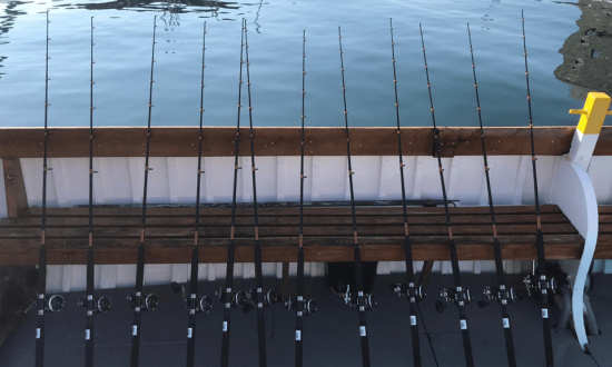 Fishing rods lined up on one of our fishing trips